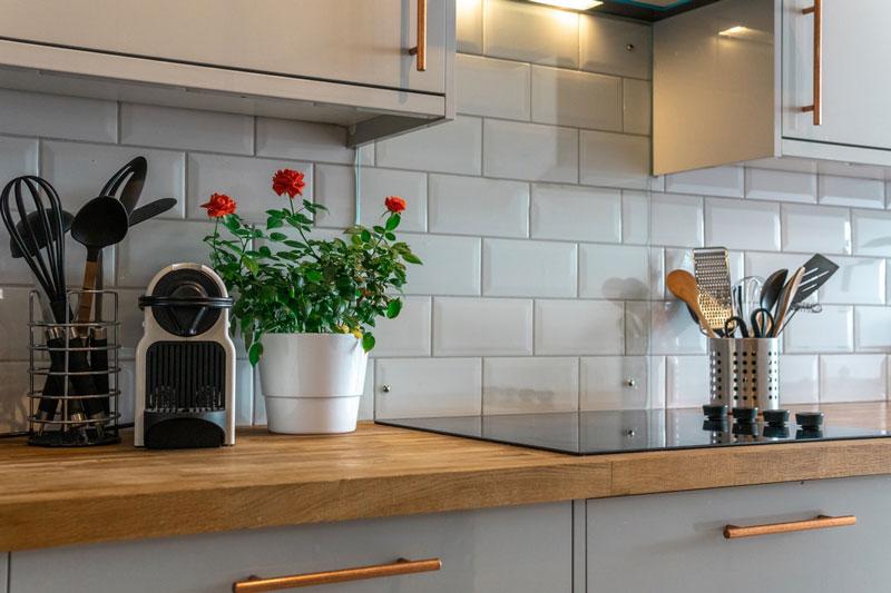 cocina con plantas minimalista